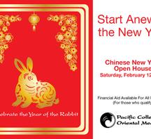 Chinese-new-year-nyc