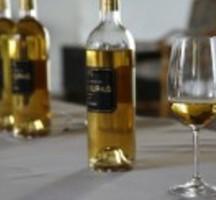 Wine-tasting-bottle-glass