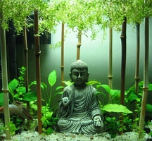 Buddha-office-2